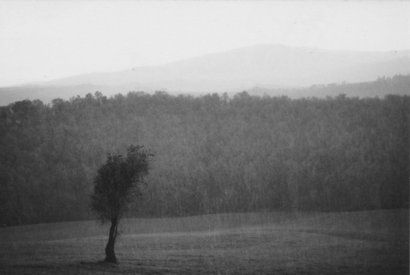 FOTOLa pioggia_b:n